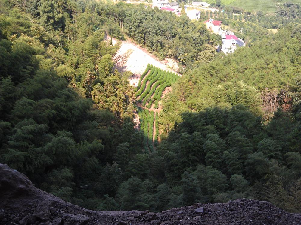 路过的风景石鹅岩