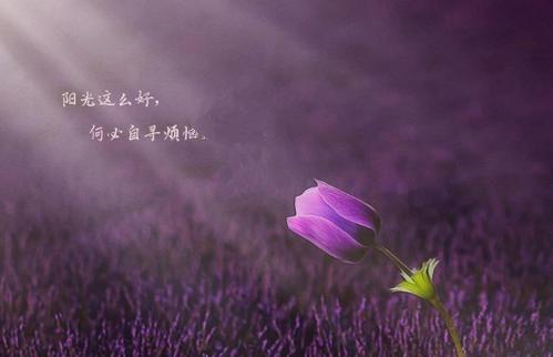 QQ图片20210614191918.jpg